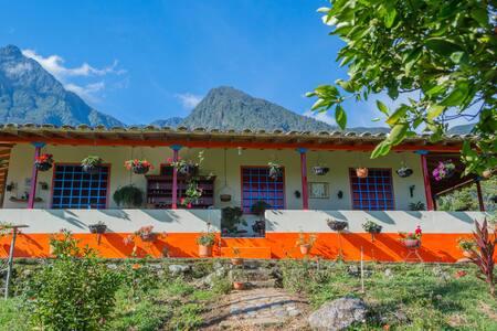 Experiencia cafetera en la Hacienda San Pablo