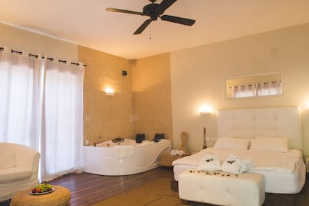 ROOF OF THE GALIL- HADARIM SWITE - Amirim - Bed & Breakfast