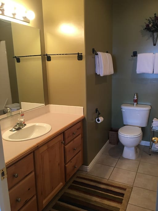 Master bath with large jetted tub