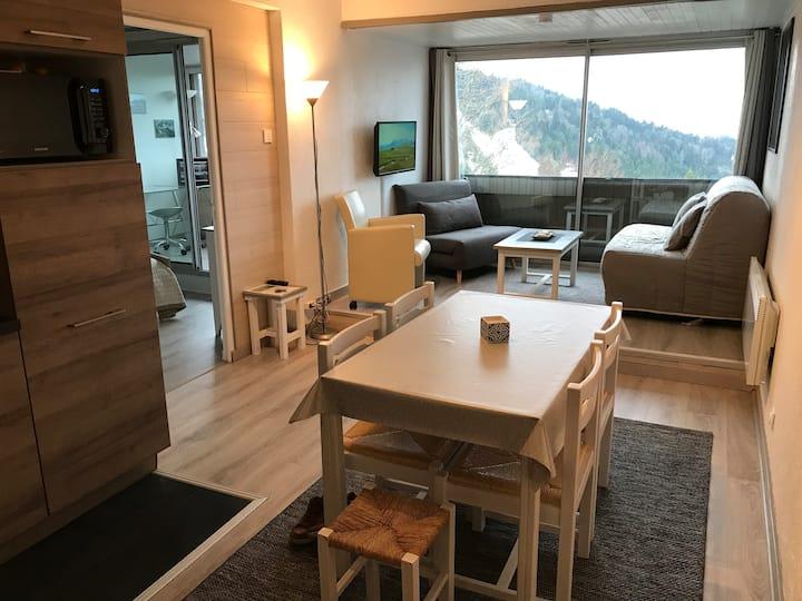 Appartement montagnard le Lioran