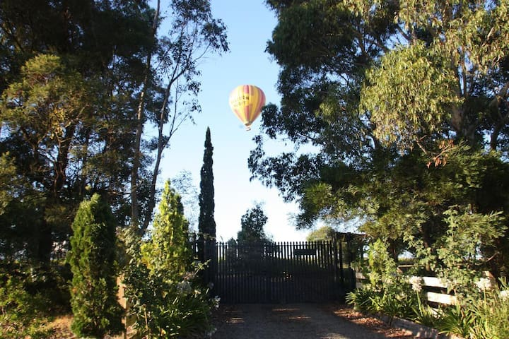 A balloon ride over our property and the Yarra Ranges