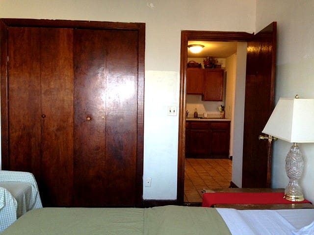 Brush Park Apt Close to Downtown - Detroit - Apartment