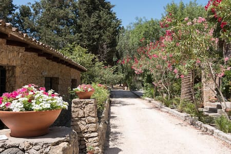 743 Comfortable guest house in Villa - Nardò