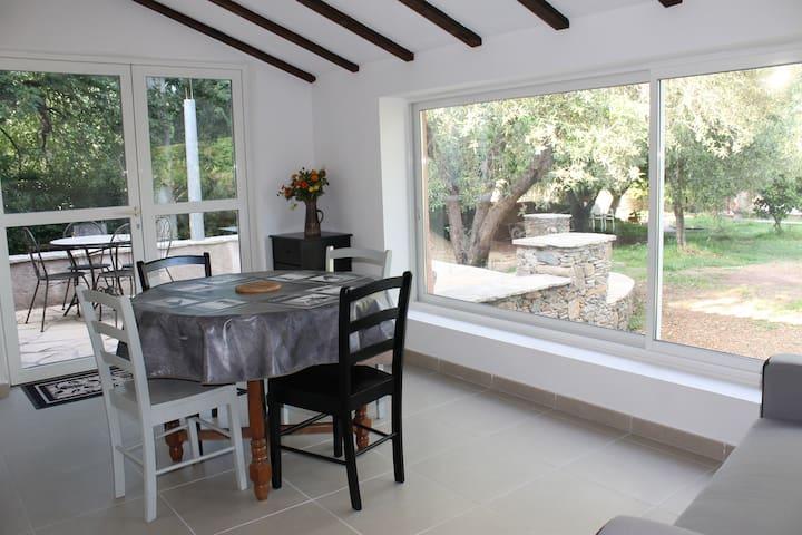 L'Alivu maison face à la piscine - Sorbo-Ocagnano - Casa
