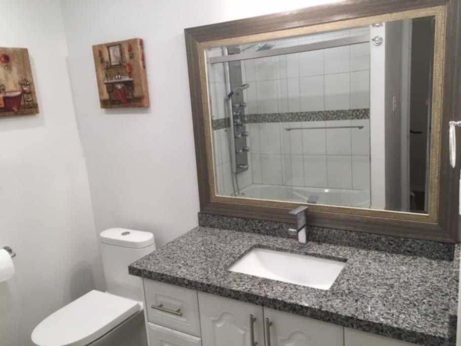 Washroom Vanity and Toilet