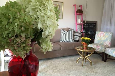 Main level studio apartment - Plymouth - Lägenhet