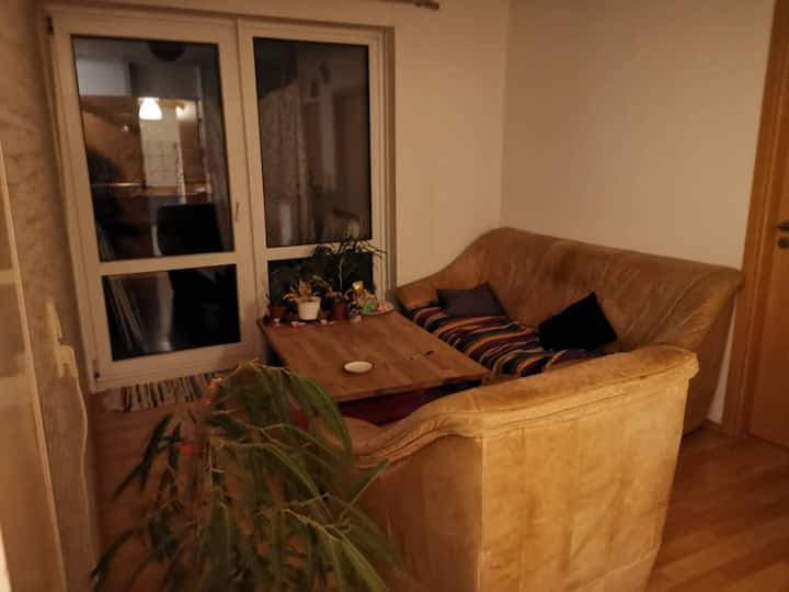 Small room in a friendly flat with balcony on WHO