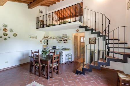 "apartment ""la Fontanella"" Mugello - San Piero a Sieve - Apartment"