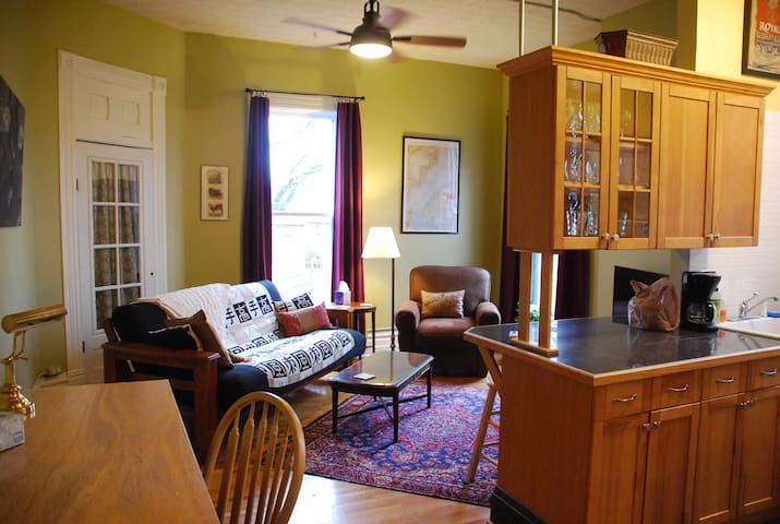 Spacious One Bedroom Flat between downtown and OSU - Columbus - Apartment