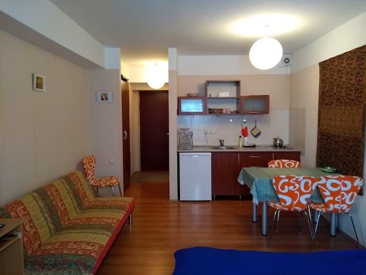 Apartment # 40