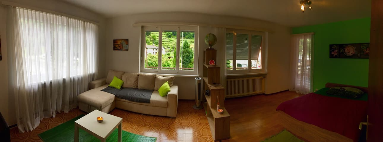 Cozy apartment in wonderful Vallemaggia - Maggia - Appartement