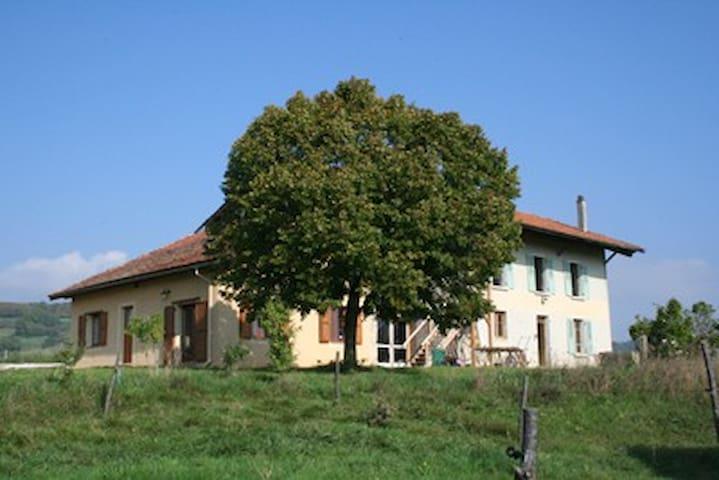 la grange du haut - Saint-Antoine-l'Abbaye - Naturstuga
