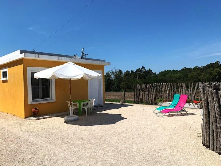 Maisonnette au cœur de la campagne portugaise