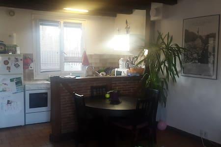 Petite maison au coeur des vignes - Saint-Martin-le-Beau - Haus