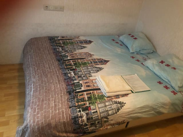 Cosy room 15 mins from Amsterdam Central!