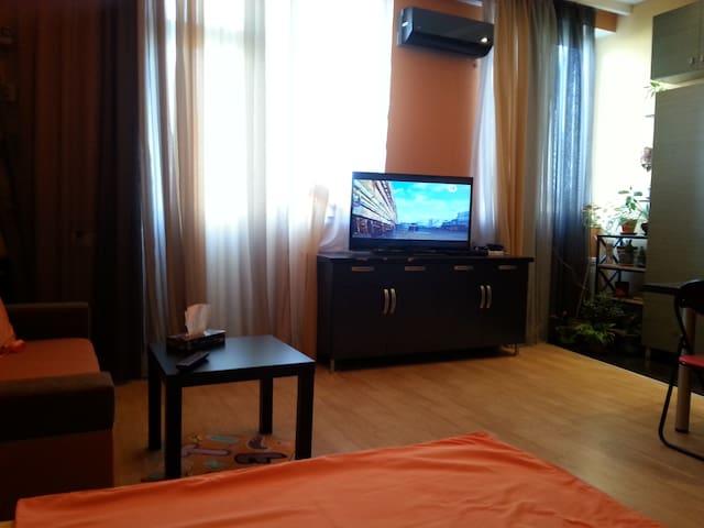 Квартира-студия  на Гагарина