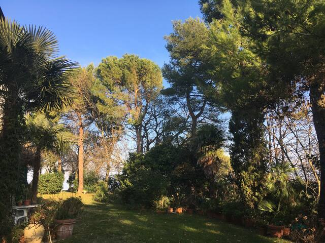 Monti House - Senigallia - Villa