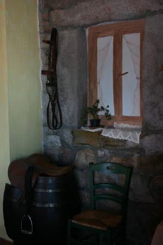 Fantastico B&B nella Fattoria - Provincia di Olbia-Tempio - Bed & Breakfast