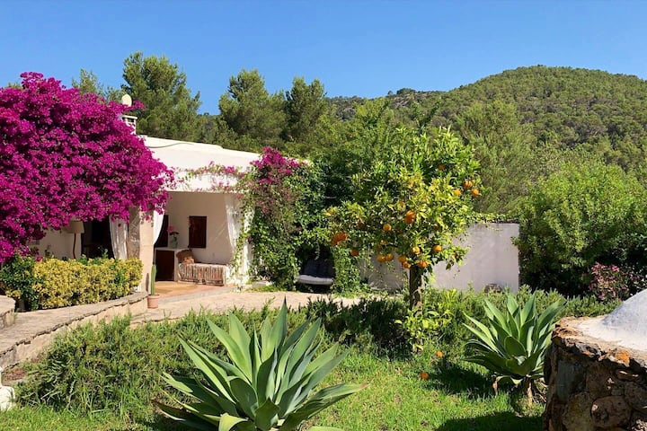 Double room in charming finca pool in countryside