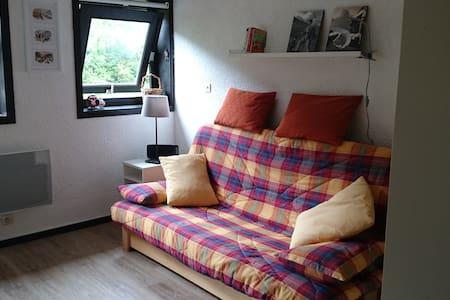 Petit studio pieds des pistes 2/3 personnes - Villard-de-Lans - Byt