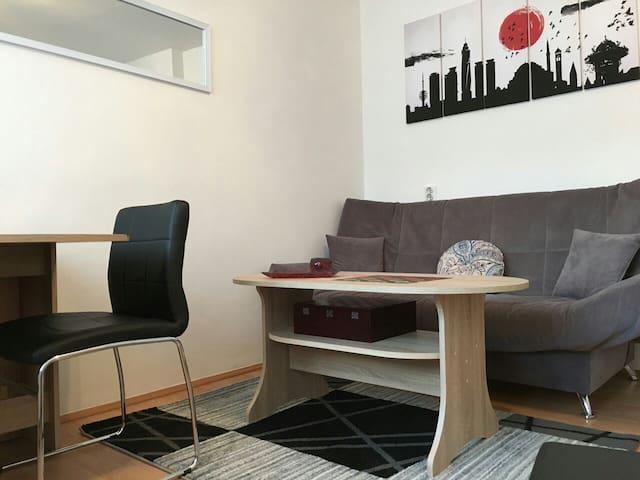 Cosy one bedroom apartment in city centre! - Sarajevo - Appartement