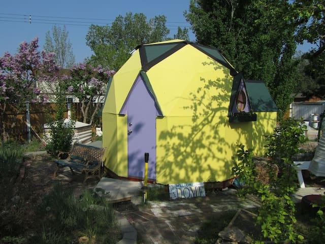 A TinyDomeHome in an urban backyard.