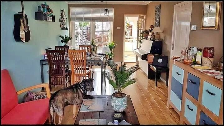 SUNNY HAPPY HIPPIE HOUSE - BEACH VILLAGE IJMUIDEN!