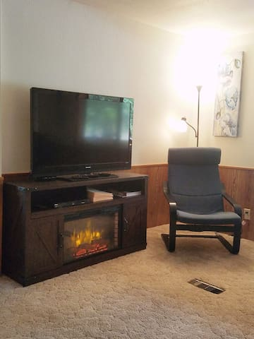 Living room electric fireplace and 46 inch TV