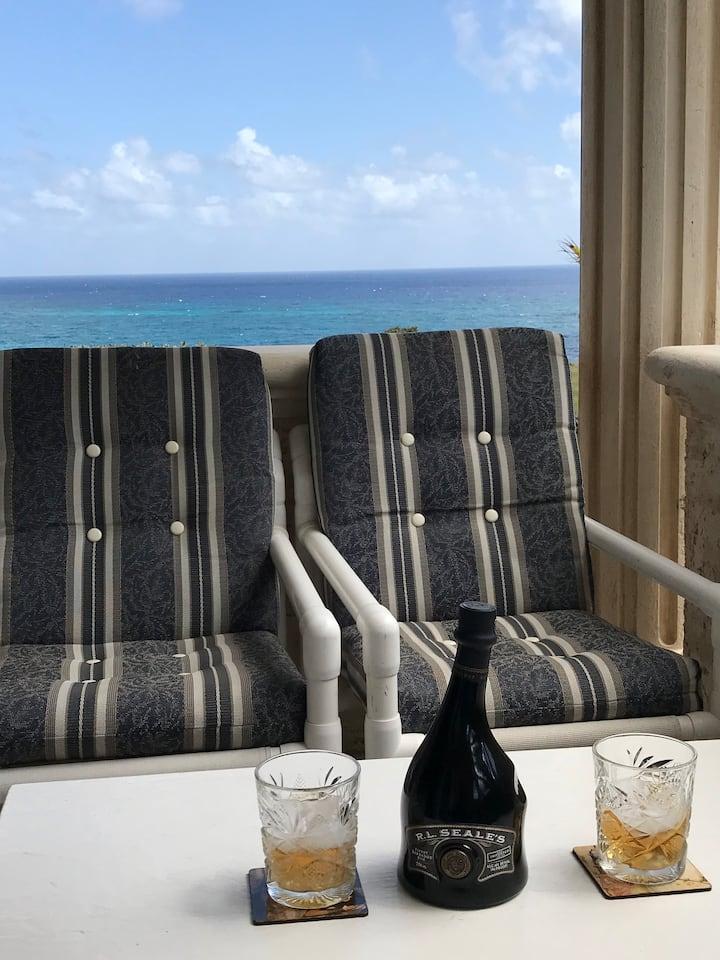 Cliff top Luxury Ocean Front 2 bedroom Apartment