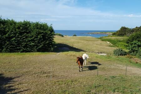 Sea view house, Kersidan beach, Trégunc, Brittany