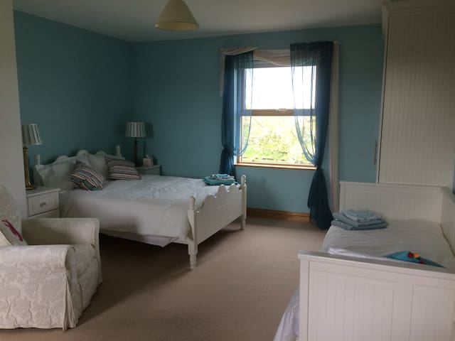 Bracklin Bridge Country House and Stables (Room 1) - Westmeath - Bed & Breakfast
