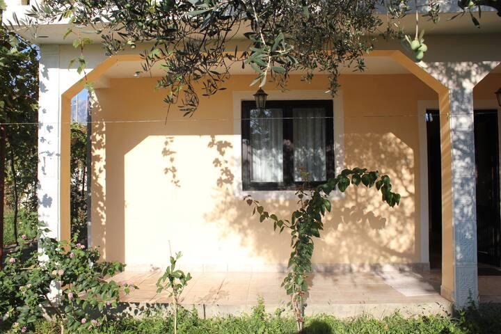 Elena house