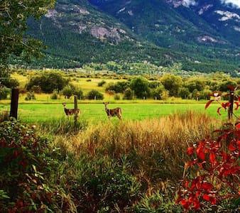 Nature's Paradise - Kisház