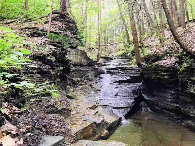 Gorges Hideaway at Little Leaf Farm