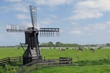 Oostwoud: molen