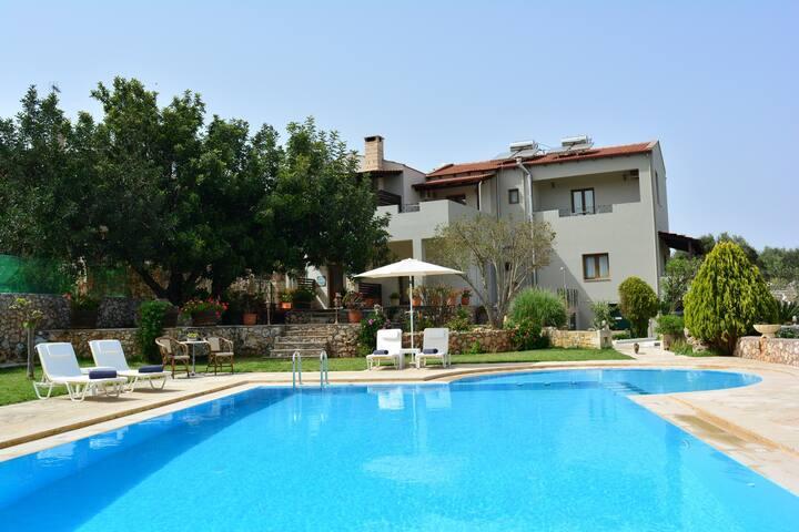 Elianthos/Villa Olive