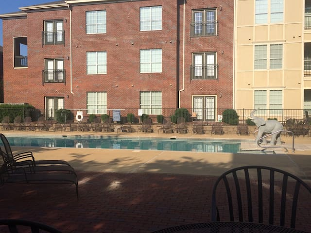 Beautiful 2BR condo near U of A . - Tuscaloosa - Lyxvåning