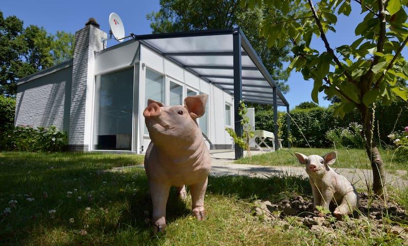 Rustig gelegen Vakantiehuis in Kortgene