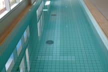 PoolLong pool on the ground floor - Piscina aquecida - 25 metros de raia - Andar 0*