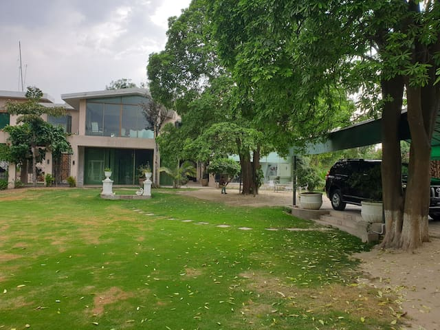 Country living on a green 6 acre property