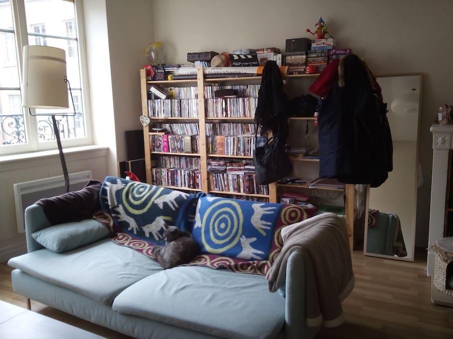 Salon (canapé peut servir de lit une place)