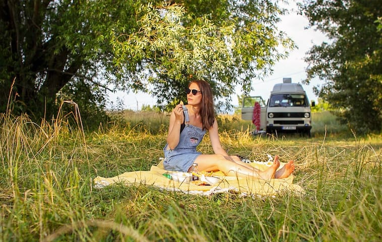 Experience Norway in a retro vanagon