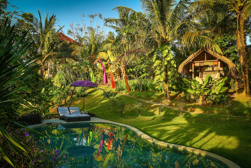 Maddie okt 2017: We loved the pool and outdoor hut to relax, especially in the evening with the pool and garden lighting creating a magical ambience.