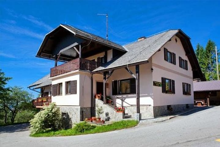 Spacious apartment with a mountian view in Zreče