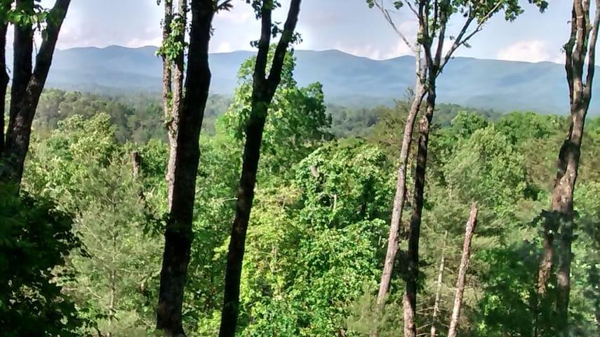 Pine Mnt Cabin Hideaway- Fantastic views! - Ellijay - Cabin