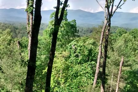Pine Mnt Cabin Hideaway- Fantastic views! - 埃利傑(Ellijay) - 小屋