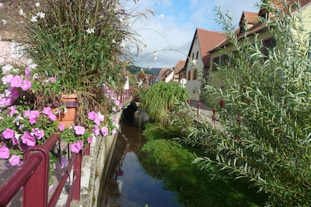 Take a break on the route de vin in Alsace - Soultzmatt - อพาร์ทเมนท์