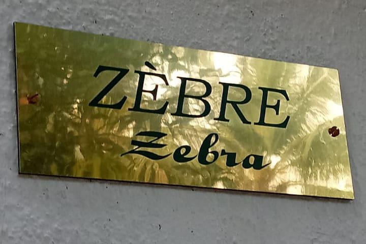 """Belle Pondy """" zebre' """""""