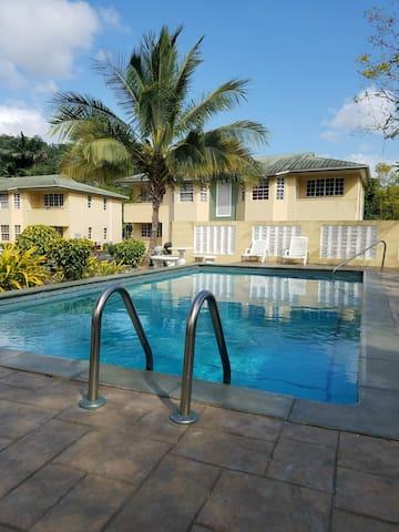 Sunny Santa Cruz Apartment - La Pastora Settlement - アパート