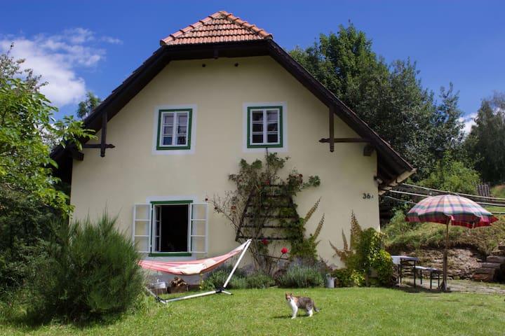 Altes Bauernhaus im Grünen - Puchegg - House